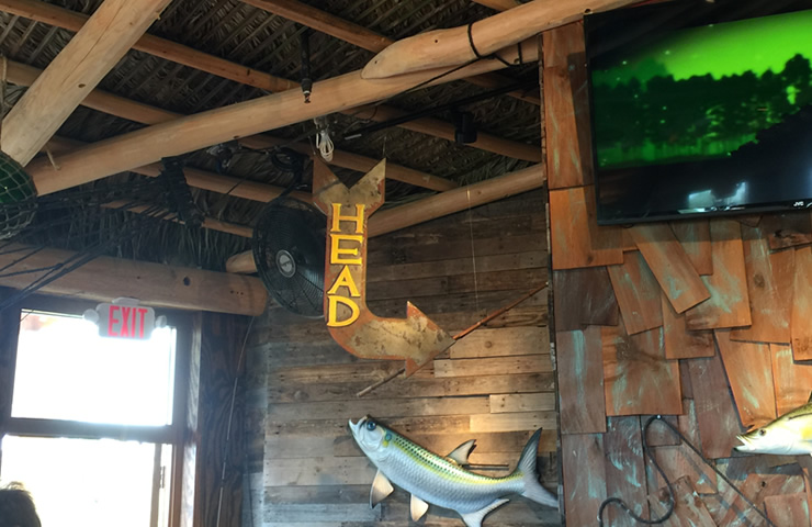 Bimini-casual-head